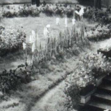 Patruunan puutarha - Maailmanperintökohde Verlan puuhiomo ja pahvitehdas