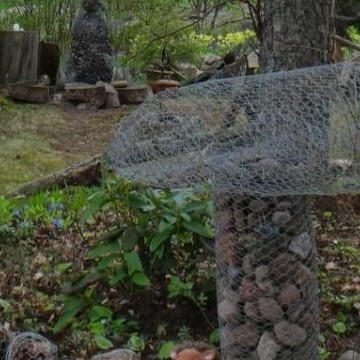 Anittas och Esas trädgård