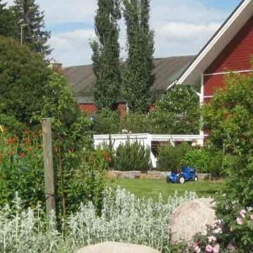Reijas trädgård