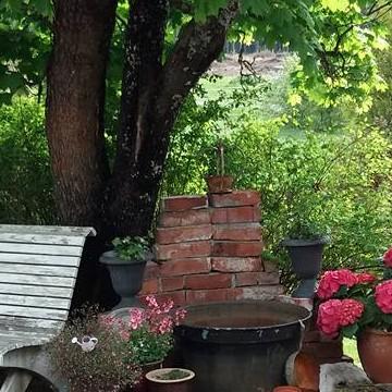 Nina Koivulas trädgård