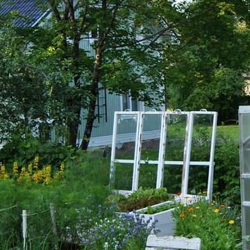 Kaunismäki trädgård