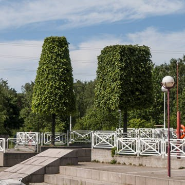 Lill-Hoplax parken