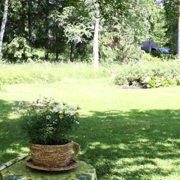 Ritvas perennträdgård