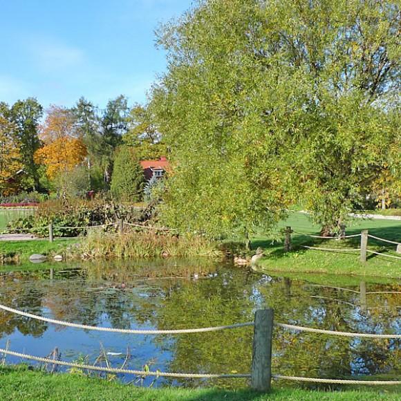 Puutarhakoulun puisto