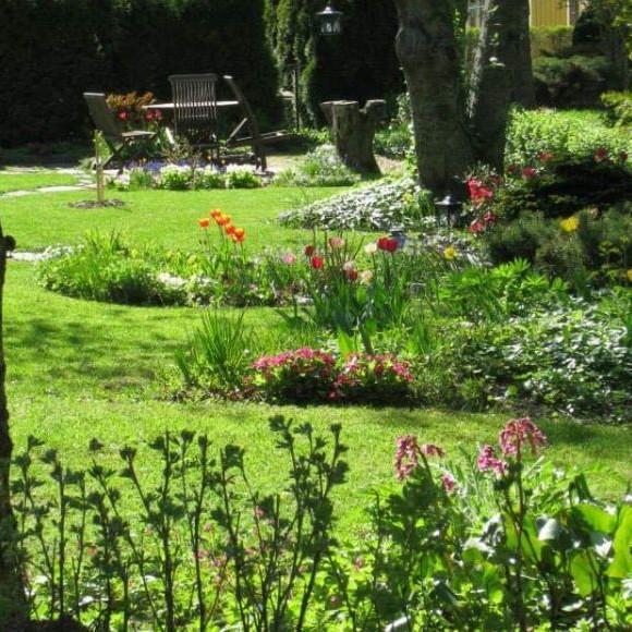 Tuulan puutarha