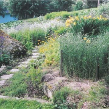 Reijo Pilppus trädgård