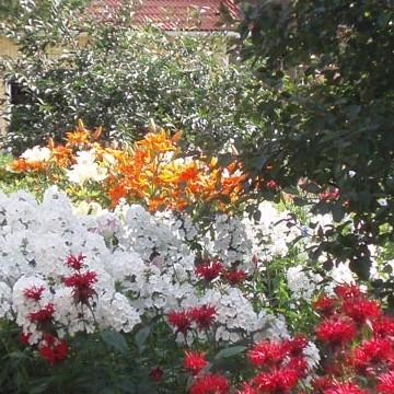 Mäntyhovi trädgård