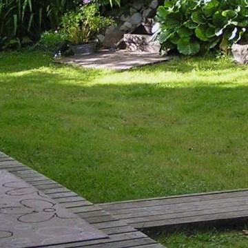 Liisas trädgård