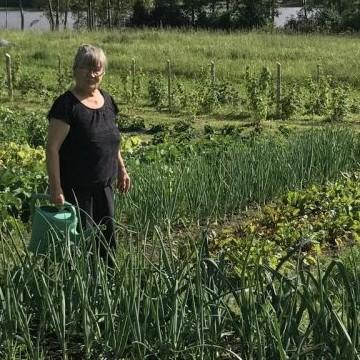 Mummon puutarha
