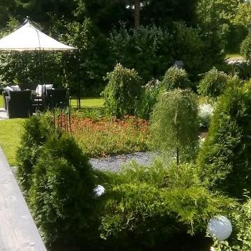 Niemen puutarha
