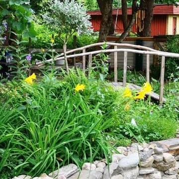 Haapa-ahojen puutarha