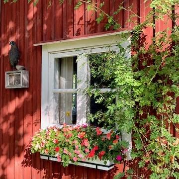 Seija-Liisan puutarha & pihamaa