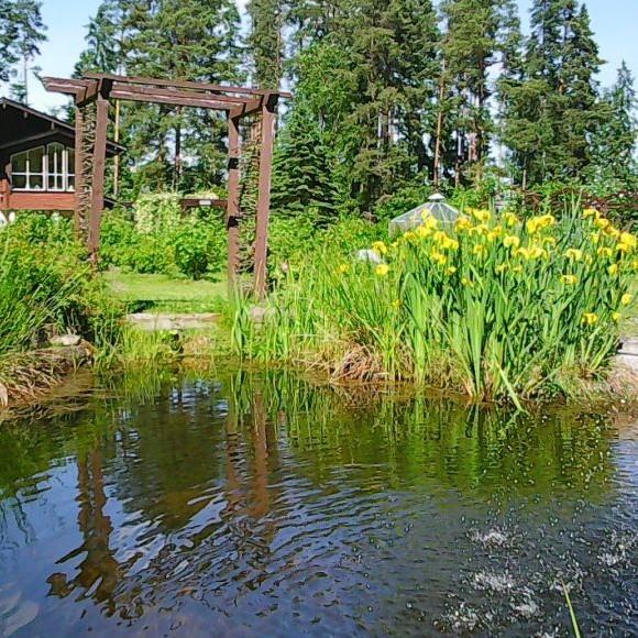 Koivistos trädgård
