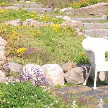 Kaninkolon kukkapuisto