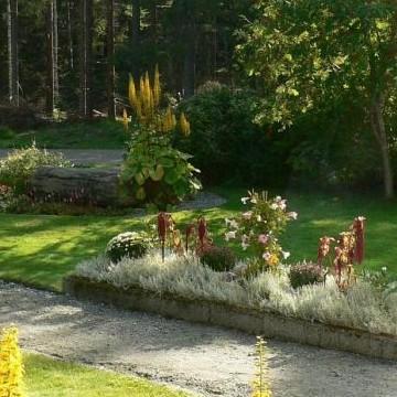 Pihlajakummun puutarha