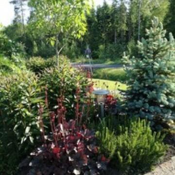 Sadun puutarha