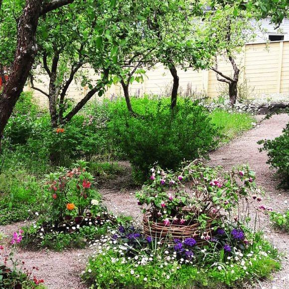 Fredrika Runebergin puutarha
