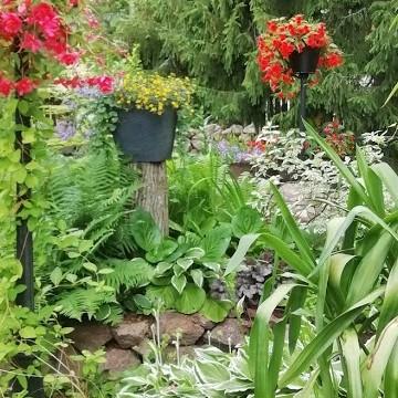 Kaunisvaaran cottage garden