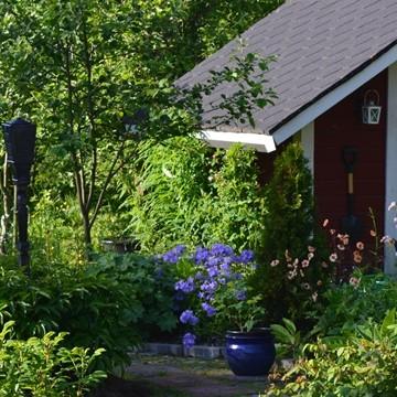 Lisbeths trädgård
