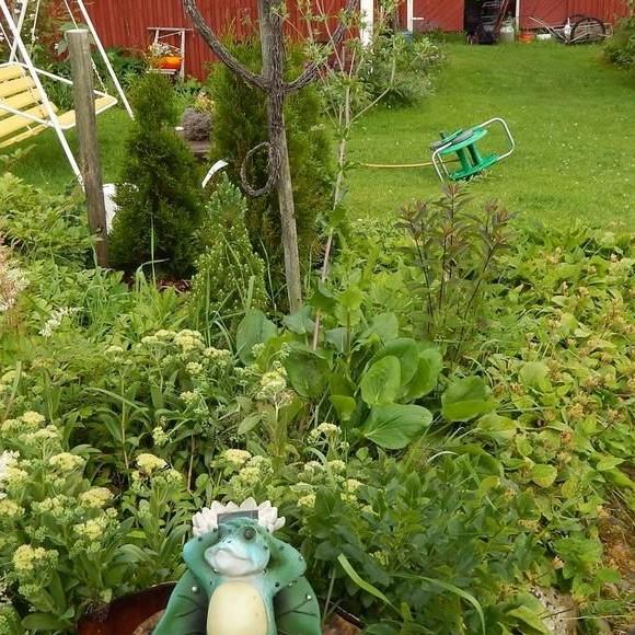 Ellin ja Pärren puutarha