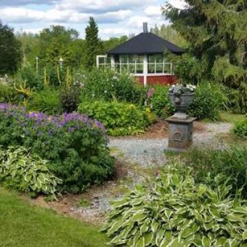 Hauskan puutarha