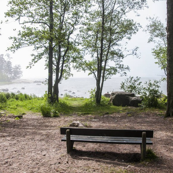 Takaniemen puisto