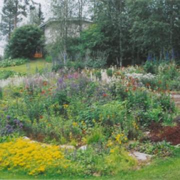 Reijo Pilpun puutarha