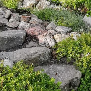 Kivikkorinne