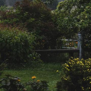 Aurora-puutarha