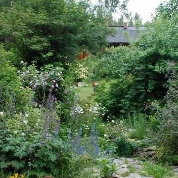 Luthers Rosenträdgård