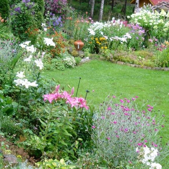 Kesäpaikan puutarha