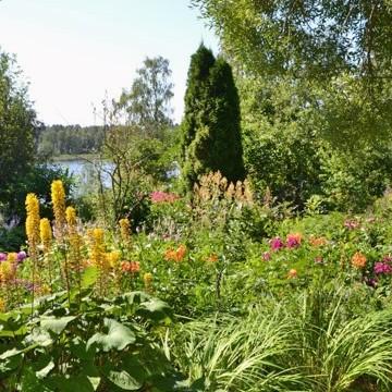 Trädgårdsälva