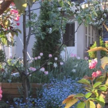 Villa Auroran puutarha
