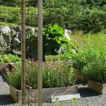 Kristine Vesterlundin puutarha