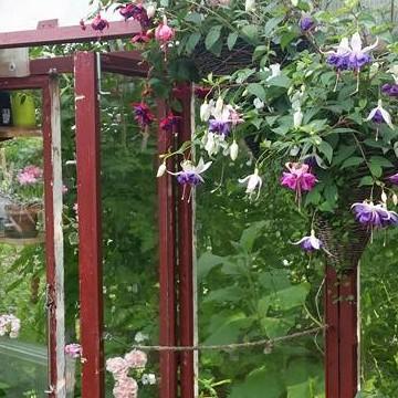 Marjan puutarha, kahvila sekä pihakirppis