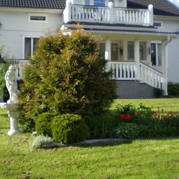 Pirjo ja Reijo Salosen puutarha