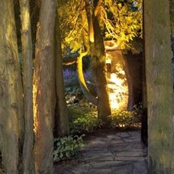 Pilves trädgård