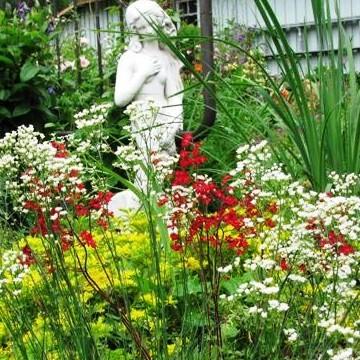 Uotiloiden puutarha