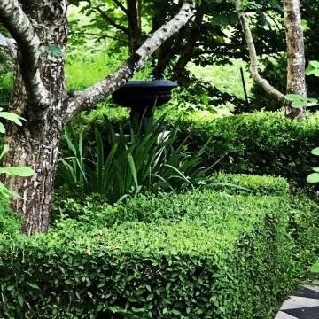 Timo ja Mari Pursion puutarha