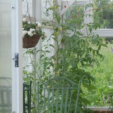 Katin puutarha