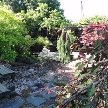 Kirstis trädgård