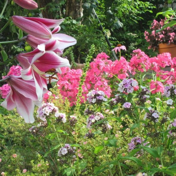 Pienten muutosten puutarha