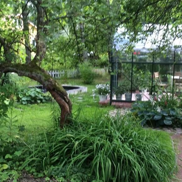 Leenas trädgård