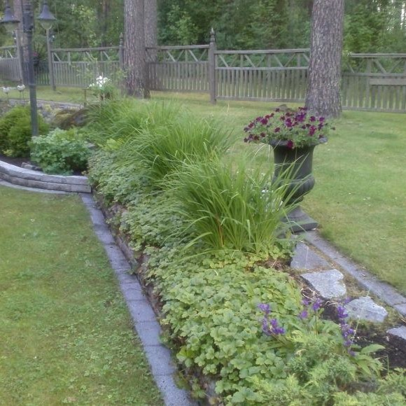 Annelis trädgård