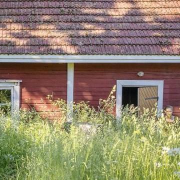 Paasia gård