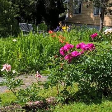 Vanhan pappilan puutarha