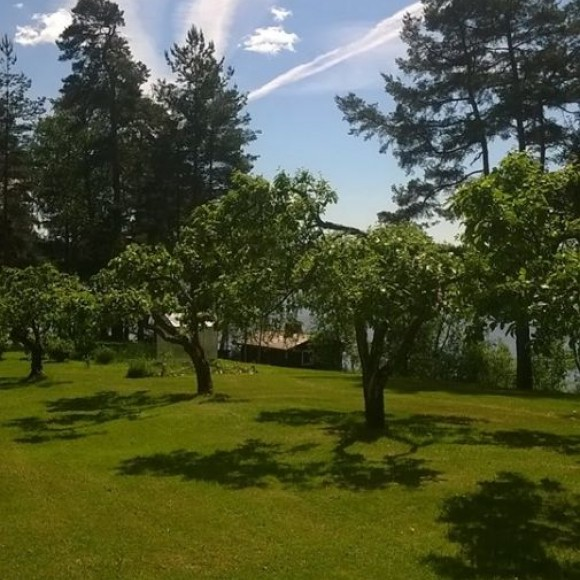 Bergvik gård