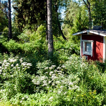 Sommarstugorna i Drumsö, Länsiulapanniemi