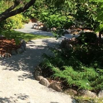 Lotan & Jyrkin puutarha