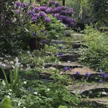 Maj Ahlviks trädgård